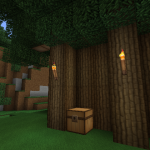 Millenaire Forest